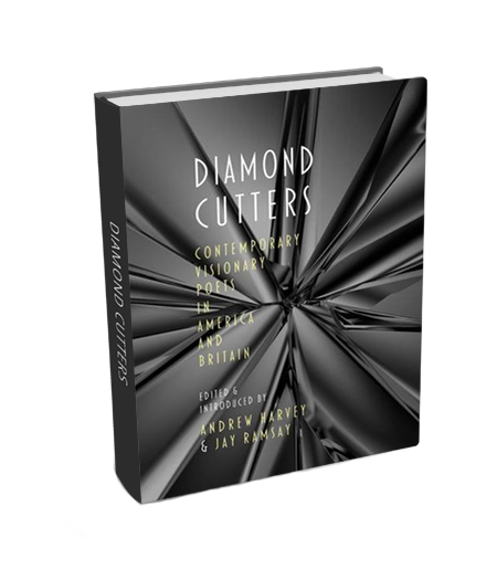 diamondcuttershbook