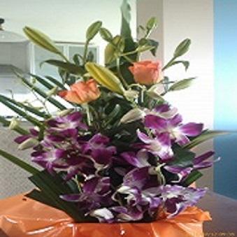 Grateful Lisa Page