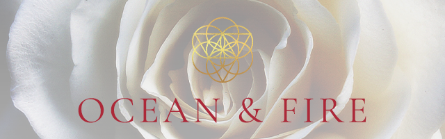 the banner of ocean fire 4-Week Virtual Women's Immersion